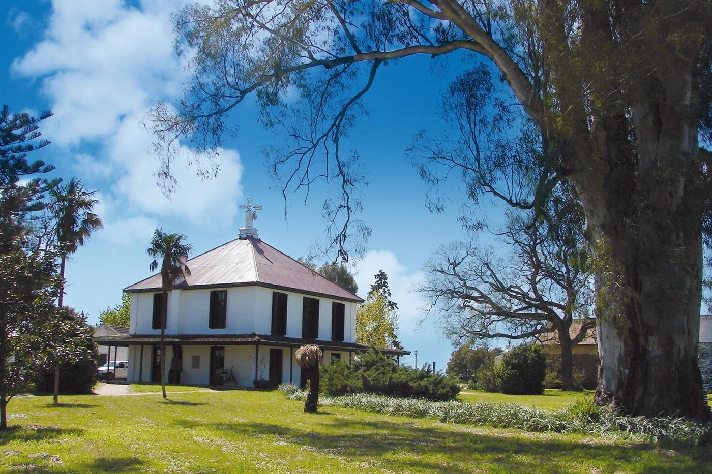 Bodega Juanicó - Paseos Uruguay